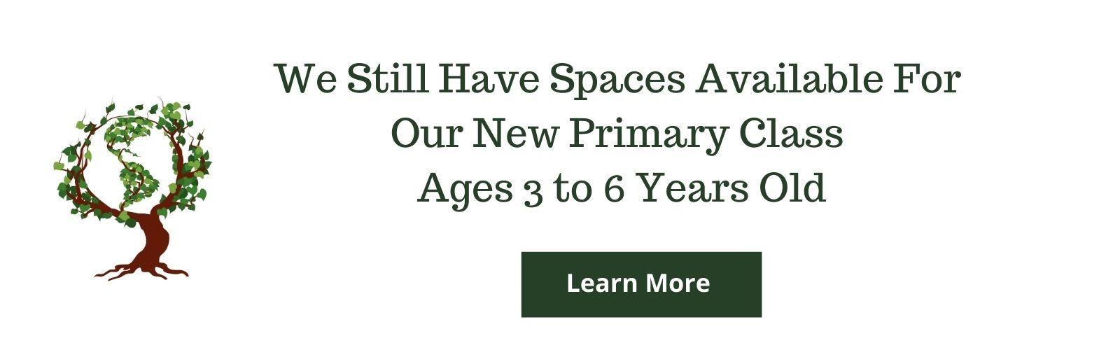new primary class
